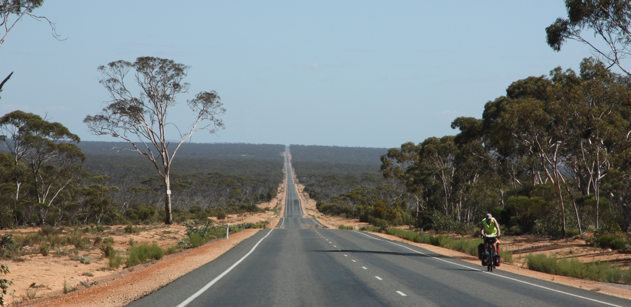 On the straight and narrow in Western Australia | Where to next? for Straight Road With Trees  584dqh