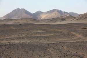 Bush camp view