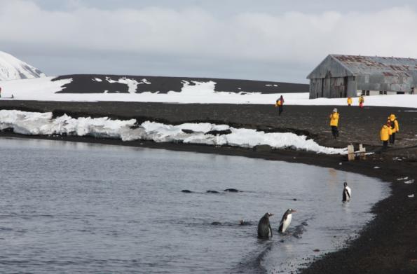 Hangar, Whalers Bay, Antarctica