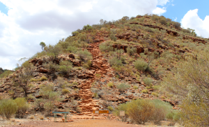 Steps at Kings Canyon