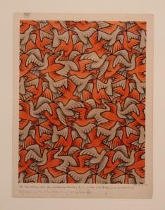 Twelve birds, Escher