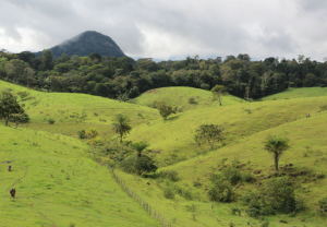 Brazilian scenery