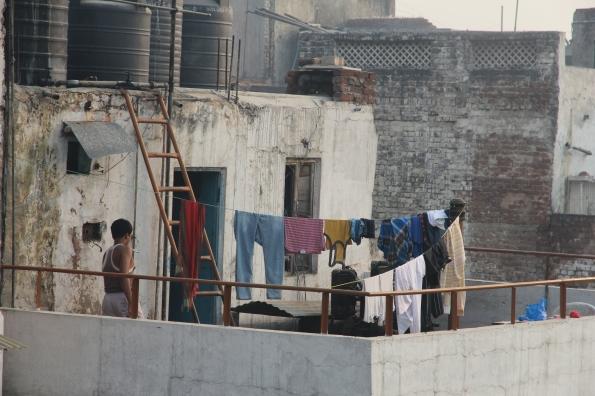 Delhi rooftop