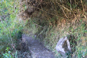 Inca Bridge path