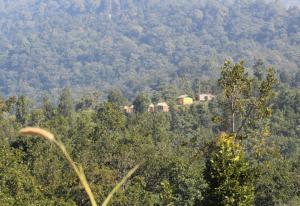 Camp Milieu