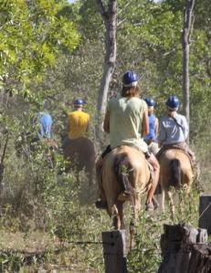 Horse-riding, Pantanal