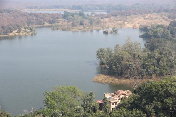 Ranthambore, Padam Talao