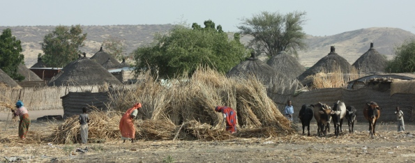 Farming in the Sudan