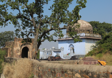 Ranthambore Fort mosque