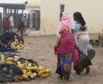 Nouadhibou's fish market