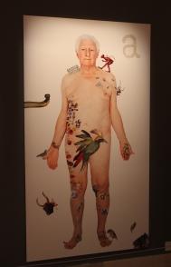 Not illegals 1, Biennale