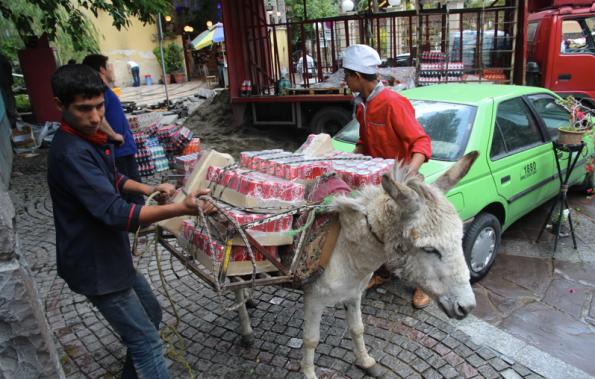 Delivering soft drinks, Tehran, Iran