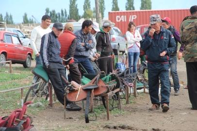 Karakol saddles