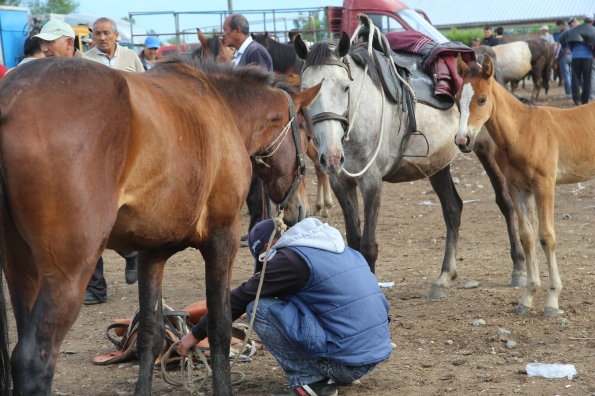 Karakol livestock market