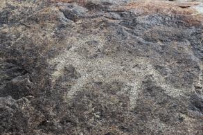 Cholpon-Ata petroglyph