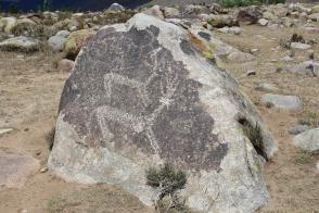 Reindeer petroglyph