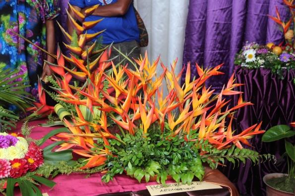 Goroka Show plants