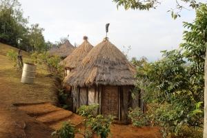 Asaro village hut