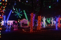 Rhema tree lights