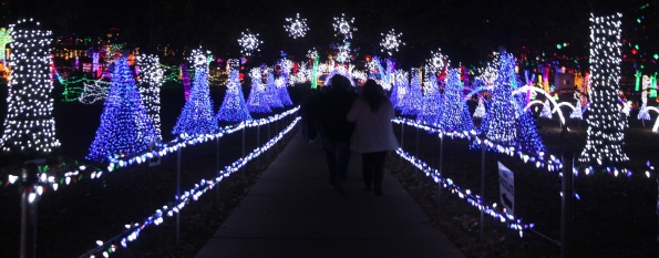 Rhema Christmas light display