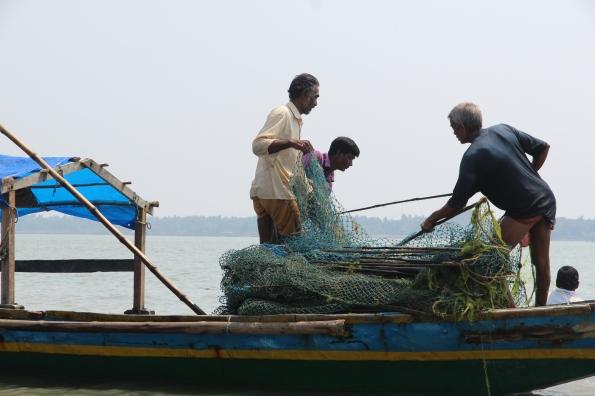 folding nets, Chilika