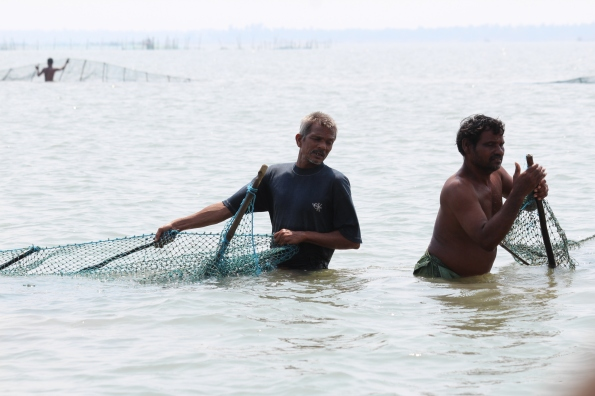 two fishing nets meet, Chilika
