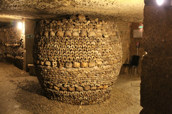 A round structure of bones