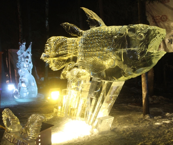 Coelacanth, ice sculpture, Fairbanks, 2016