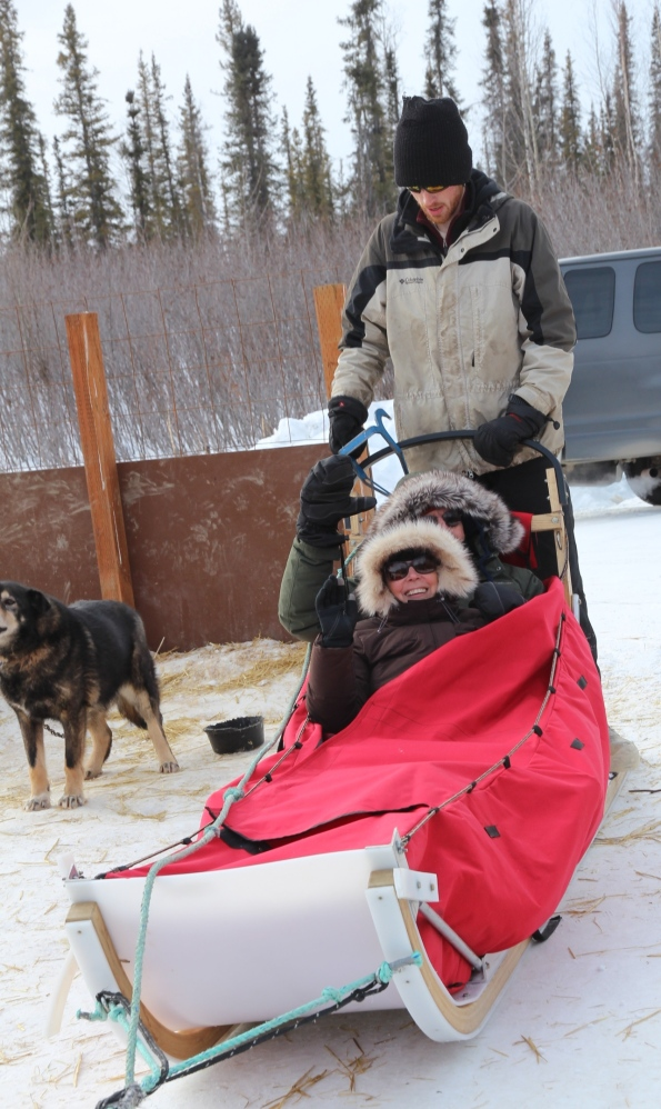 Dog mushing in Alaska