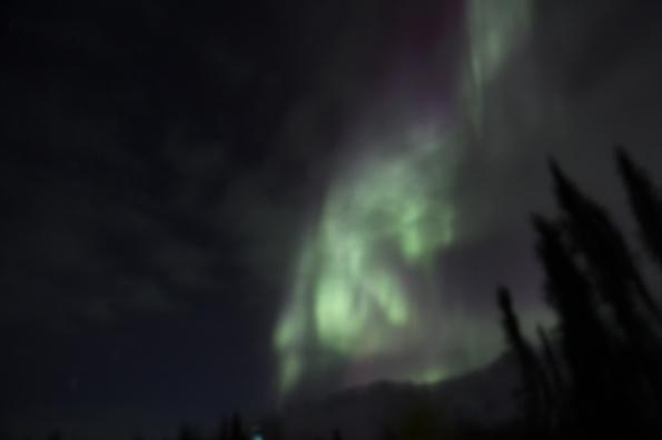 Aurora borealis in Wiseman