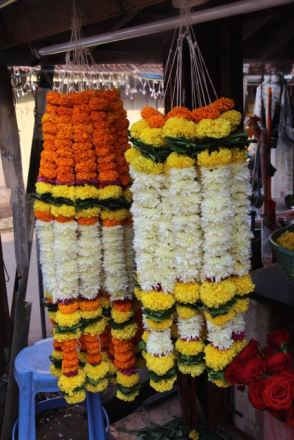 Flowers for Diwali