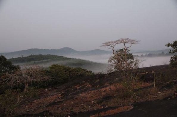 Western Ghats in early morning