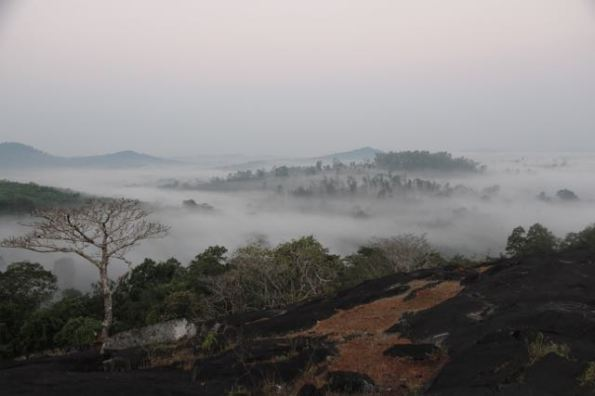 early morning, Western Ghats, India
