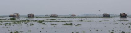 Houseboats on Punnamada Lake