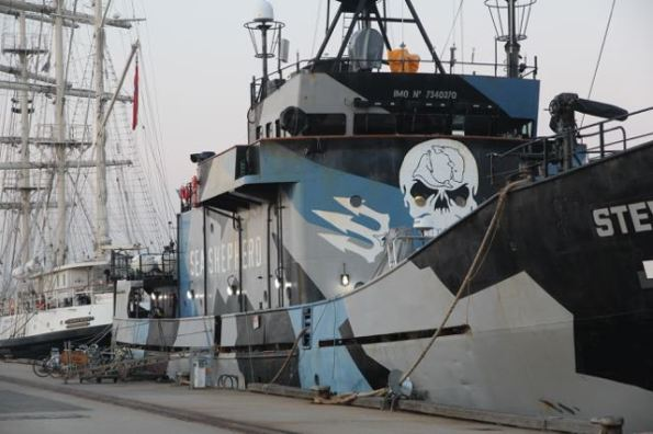 Greenpeace Sea Shepherd