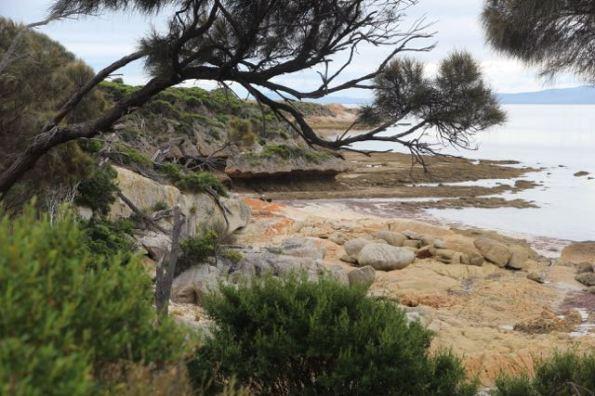 Fotheringate Beach, Flinders Island