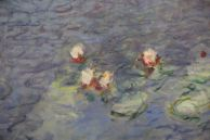 Monet close-up water red white