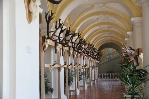 Rundāle Palace, corridor of antlers