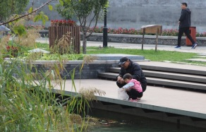 Feeding fish, China