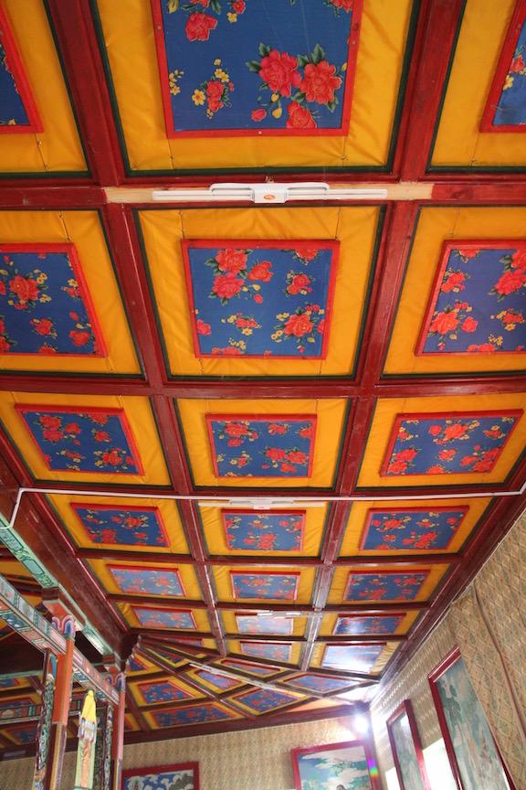 Aryapala ceiling