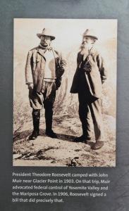 President Roosevelt and John Muir