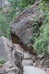 Riverside Walk, Zion National Park