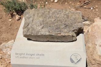 Bright Angel shale, Grand Canyon