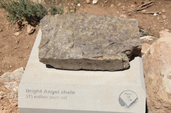 Bright Angel shale, Grand Canyon