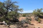 Views in Betatakin, Navajo National Monument