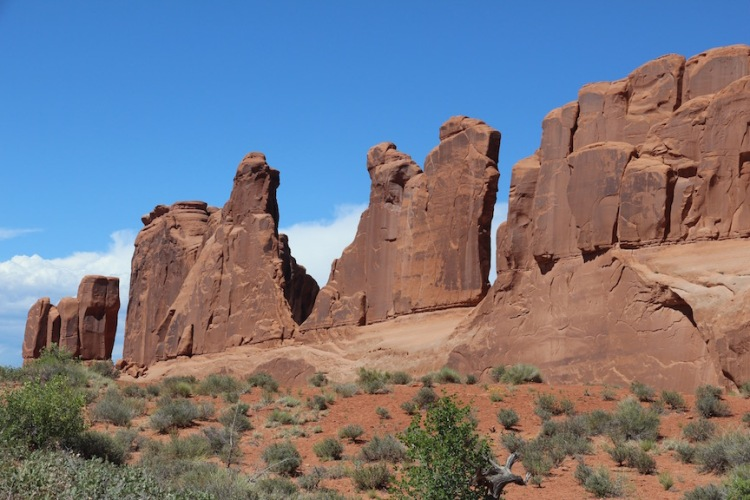 A wall of Entrada Sandstone, Park Avenue, Arches National Park