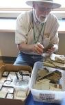 Explaining fossils, Florissant Fossil Beds