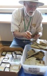 Explaining fossils, Florissant Fossil Beds
