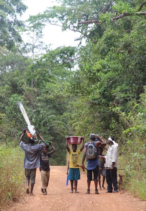 Sierra Leone countryside