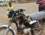 chickens on motorbike